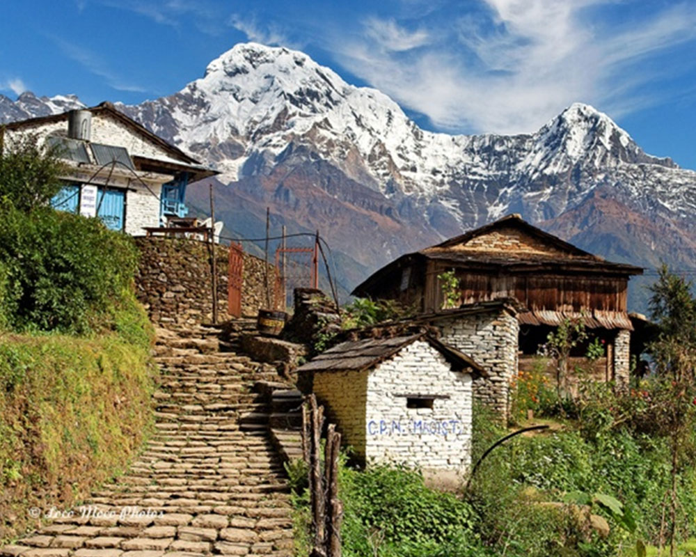 Annapurna Village Lodge Trek